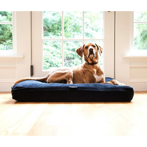 American Blanket Company Pet Beds