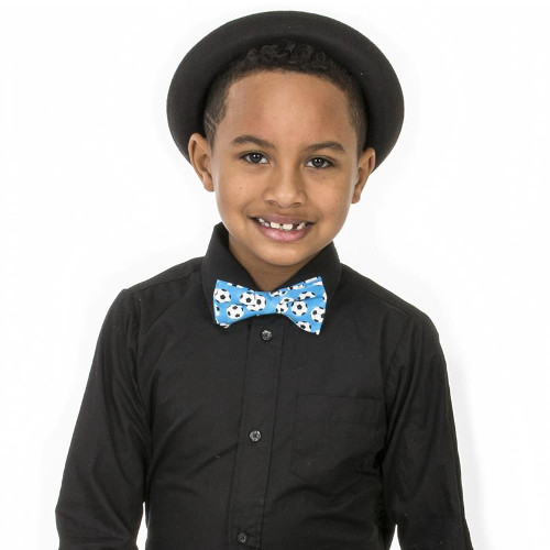 Fly Guy Neckties | Fairy Finery