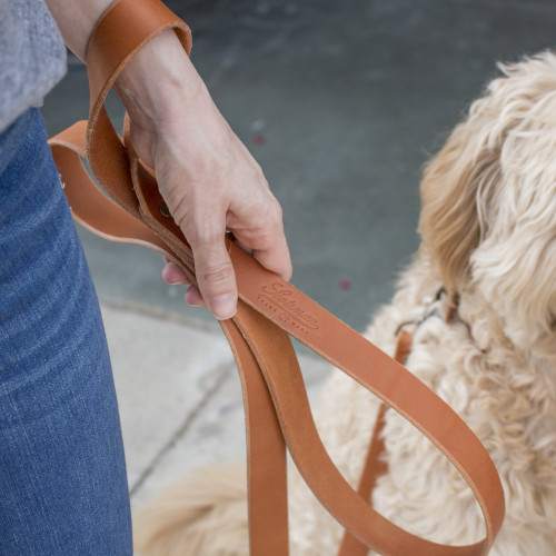 Pet Leashes | Laurel Mercantile Co.