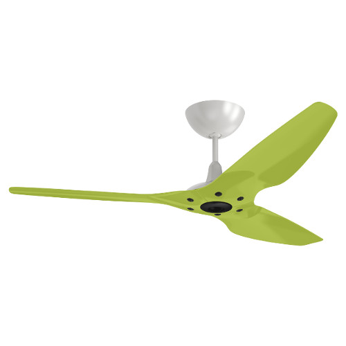 Ceiling Fans | Oomph